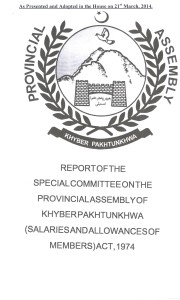 Report Adopted by the Special Committee on